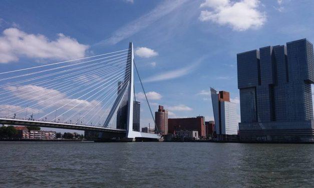 6 to do's om de koelte op te zoeken in Rotterdam